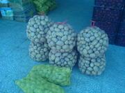 Продам Картофель из Пакистана
