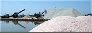 Соль морская пищевая,  для ванн,  техническая,  опт постави импорт-экспор