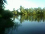 Продам дом с земельным участком на берегу реки.