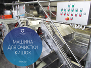 Машина для обработки кишок КРС Feleti от производителя!